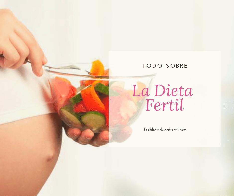 dieta fertilidad