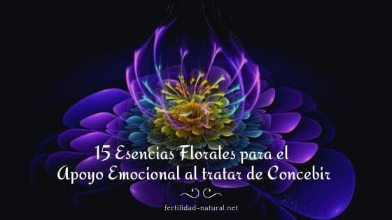 flores de bach concepción