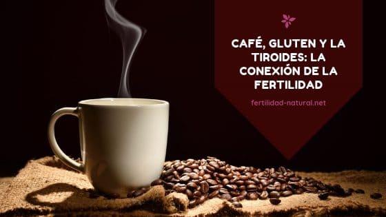 gluten del cafe tiroides fertilidad