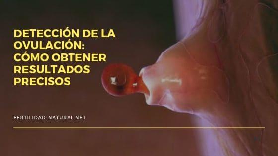 test ovulacion