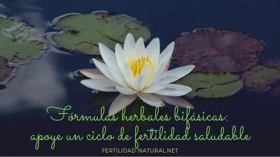 plantas fertilidad