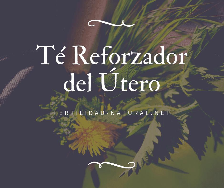 infusion reforzador utero